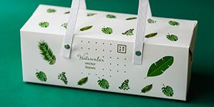 Packaging EN